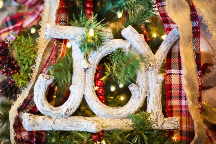 joy-1823939_1920