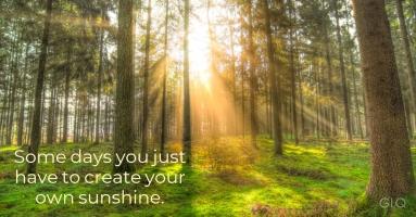 sunshine F